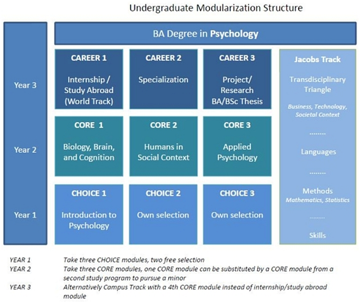 psychology_img_module_structure